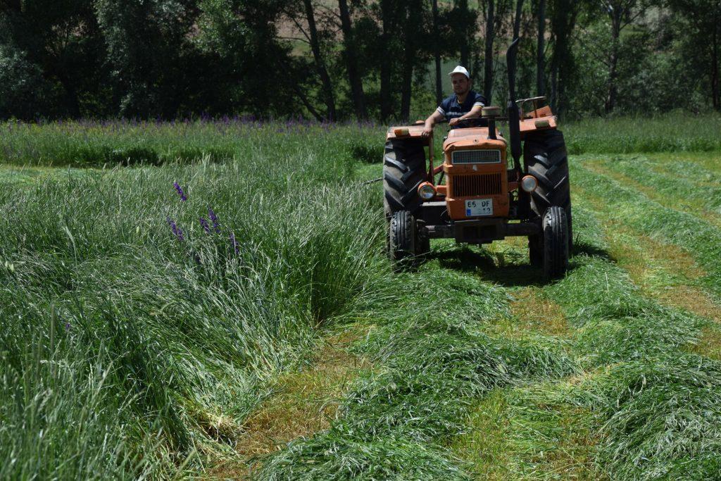 Hazineye Ait Tarım Arazilerinin Satışı