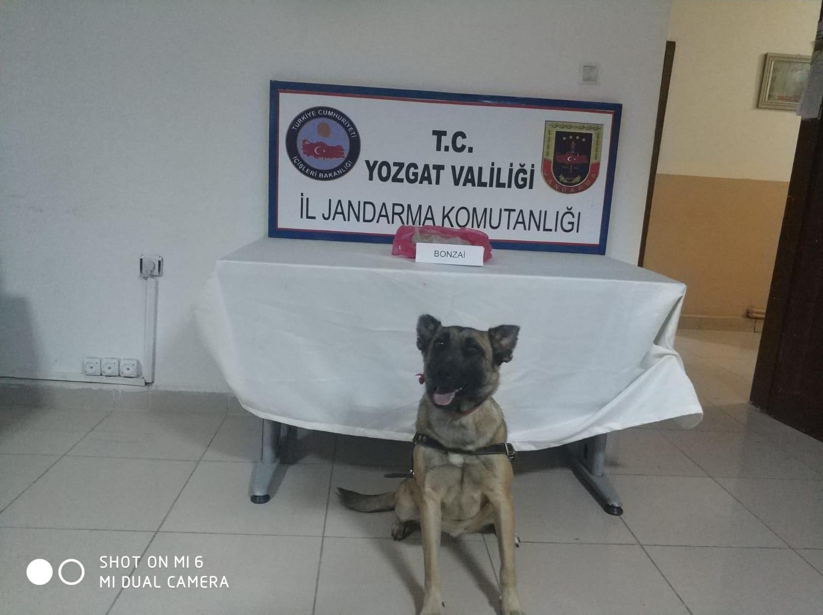 Jandarma suçlulara nefes aldırmıyor