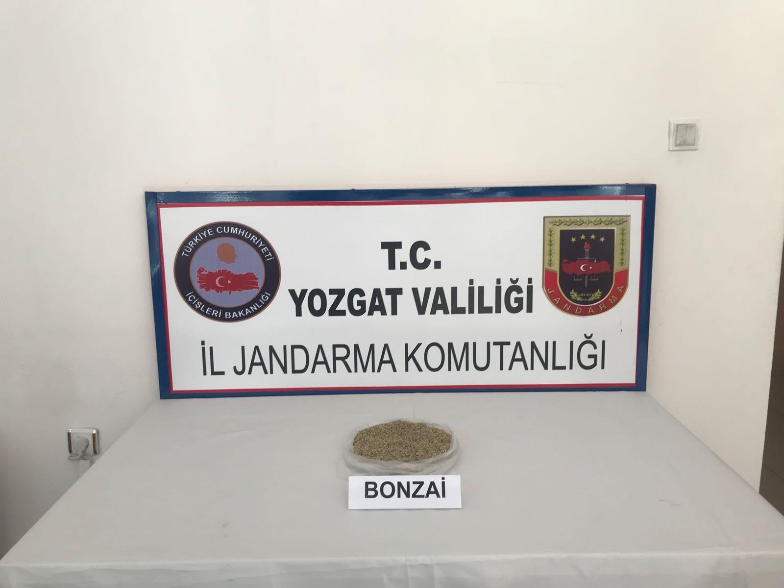 Bağ Evinde Bonzai Operasyonu